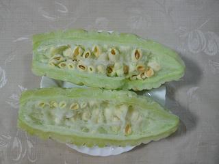 Goyasiro_006