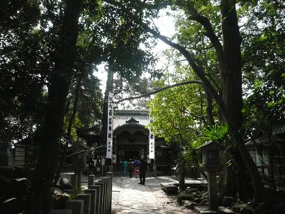 Takesima_005